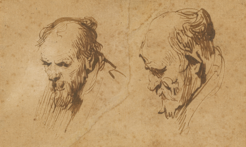 Two Studies Of The Head Of An Old Man Getty Museum