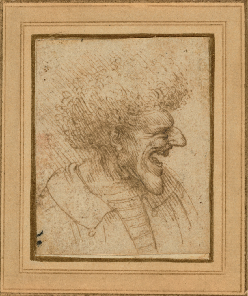 Caricature of a Man with Bushy Hair; Leonardo da Vinci (Italian, 1452 - 1519); about 1495; Pen and brown ink; 6.6 × 5.4 cm (2 5/8 × 2 1/8 in.); 84.GA.647; The J. Paul Getty Museum, Los Angeles; Rights Statement: No Copyright - United States