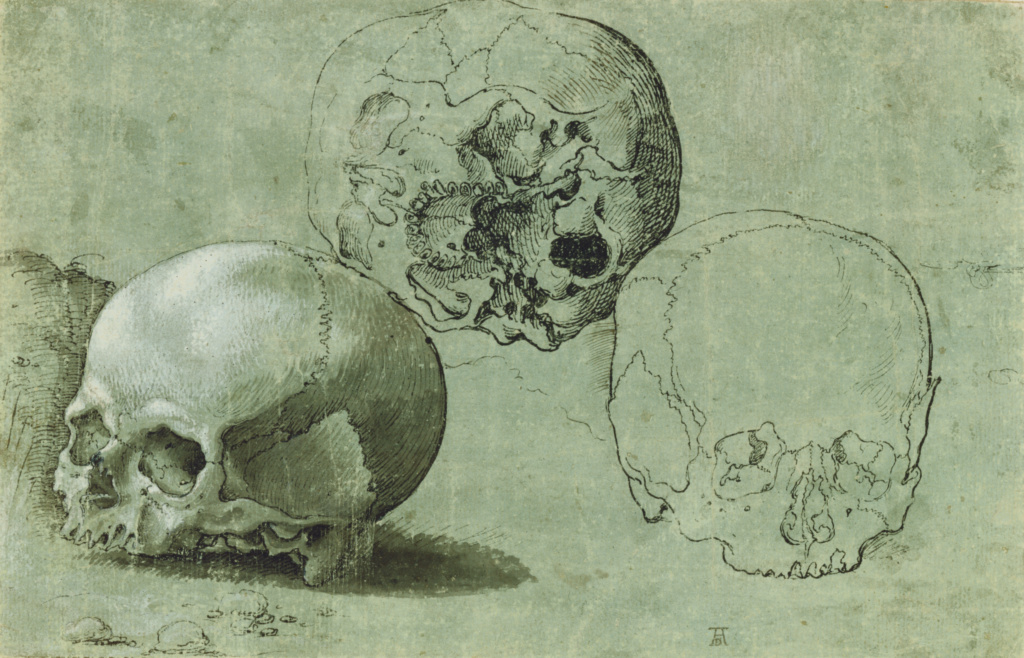 Study of Three Skulls (recto); Architectural Study (verso); Unknown maker, Southern German; Germany; about 1530; Pen and black ink, brush with gray wash, heightened with white gouache (recto); pen and black ink (verso) on green prepared paper; 14.9 × 23.2 cm (5 7/8 × 9 1/8 in.); 89.GA.24; The J. Paul Getty Museum, Los Angeles; Rights Statement: No Copyright - United States