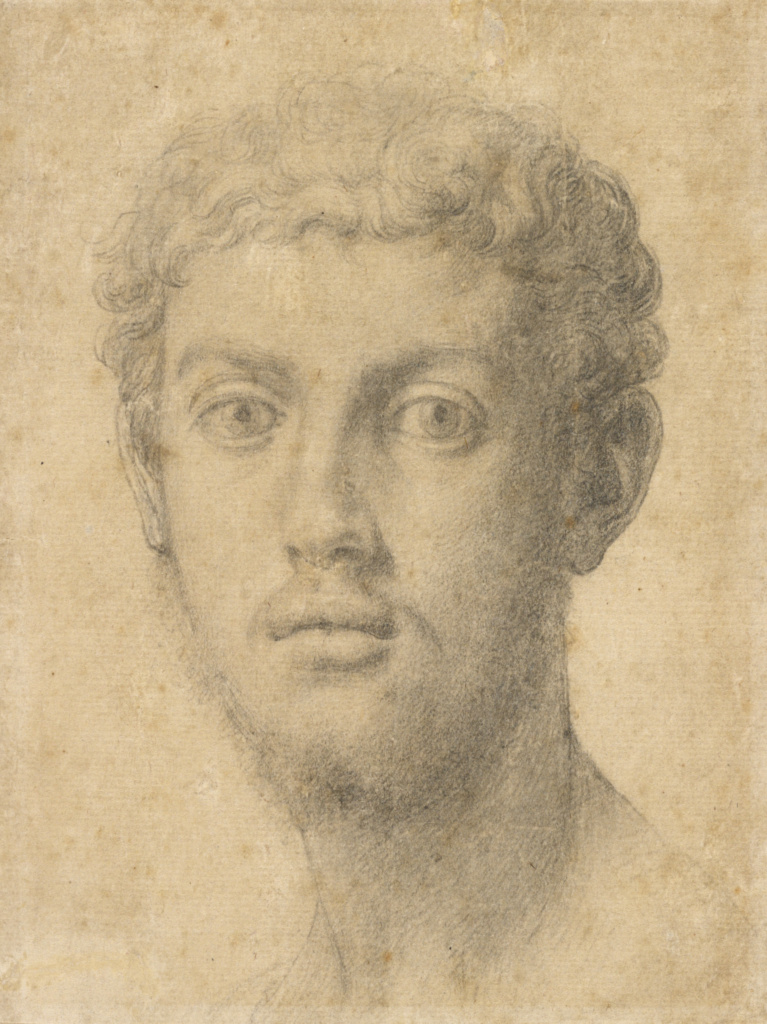 Head of a Man; Agnolo Bronzino (Italian, 1503 - 1572); Italy; about 1550–1555; Black chalk; 13.8 × 10.3 cm (5 7/16 × 4 1/16 in.); 90.GB.29; The J. Paul Getty Museum, Los Angeles; Rights Statement: No Copyright - United States