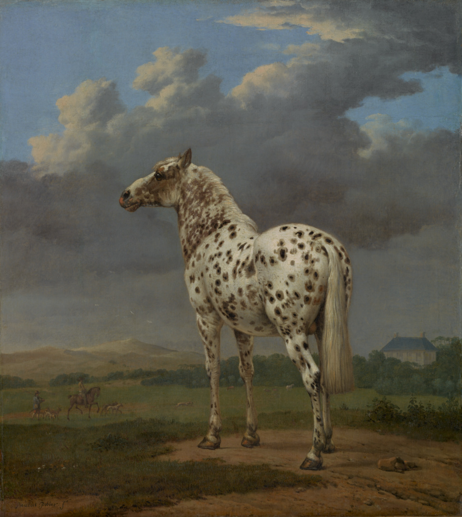 "The ""Piebald"" Horse; Paulus Potter (Dutch, 1625 - 1654); about 1650–1654; Oil on canvas; 50.2 × 45.1 cm (19 3/4 × 17 3/4 in.); 88.PA.87; The J. Paul Getty Museum, Los Angeles; Rights Statement: No Copyright - United States"