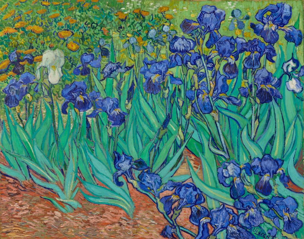 Image result for getty center IRISES