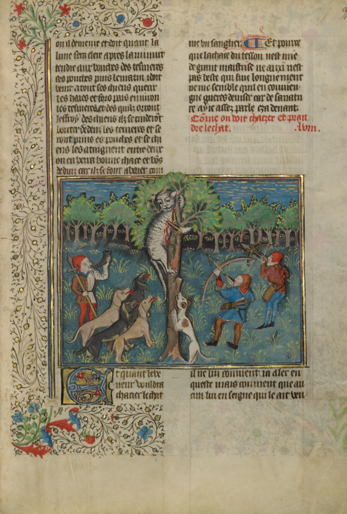 A Hunter and Dogs Attacking a Treed Wild Cat; Unknown; Brittany, France; about 1430 - 1440; Tempera colors, gold paint, silver paint, and gold leaf on parchment; Leaf: 26.4 × 18.4 cm (10 3/8 × 7 1/4 in.); Ms. 27 (87.MR.34), fol. 97; The J. Paul Getty Museum, Los Angeles, Ms. 27, fol. 97; Rights Statement: No Copyright - United States
