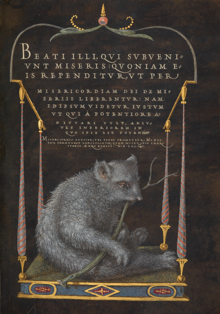 A Sloth; Joris Hoefnagel (Flemish / Hungarian, 1542 - 1600), and Georg Bocskay (Hungarian, died 1575); Vienna, Austria; 1561–1562; illumination added 1591–1596; Watercolors, gold and silver paint, and ink on parchment; Leaf: 16.6 × 12.4 cm (6 9/16 × 4 7/8 in.); Ms. 20 (86.MV.527), fol. 106; The J. Paul Getty Museum, Los Angeles, Ms. 20, fol. 106; Rights Statement: No Copyright - United States