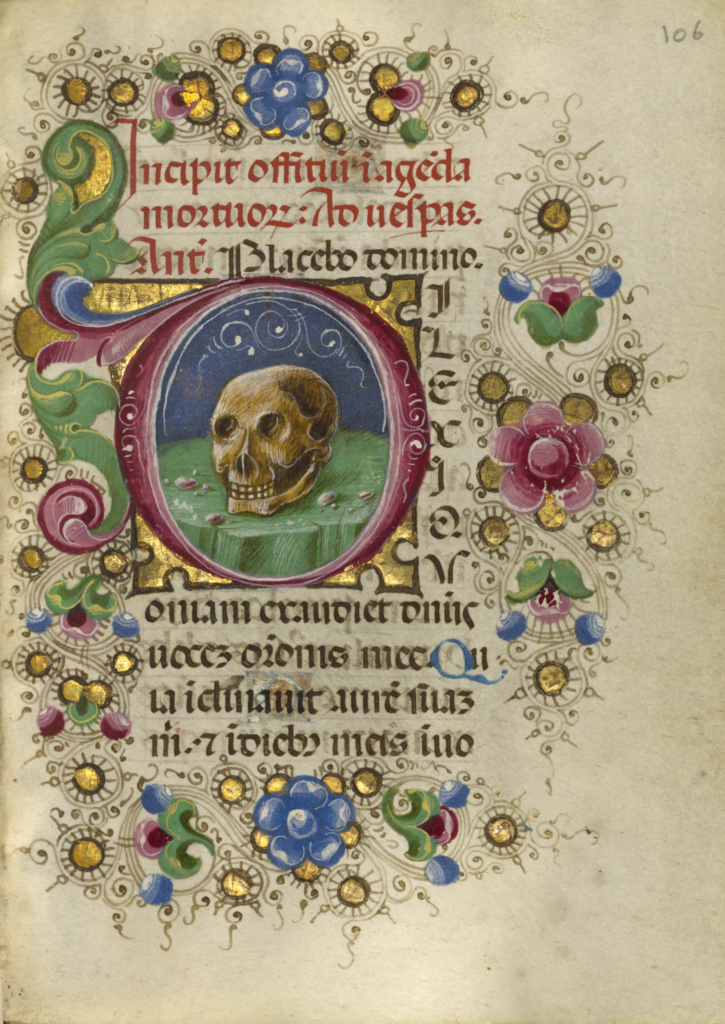 Initial D: A Skull in a Rocky Field; Taddeo Crivelli (Italian, died about 1479, active about 1451 - 1479); Ferrara, Emilia-Romagna, Italy; about 1469; Tempera colors, gold paint, gold leaf, and ink on parchment; Leaf: 10.8 × 7.9 cm (4 1/4 × 3 1/8 in.); Ms. Ludwig IX 13 (83.ML.109), fol. 106; The J. Paul Getty Museum, Los Angeles, Ms. Ludwig IX 13, fol. 106; Rights Statement: No Copyright - United States