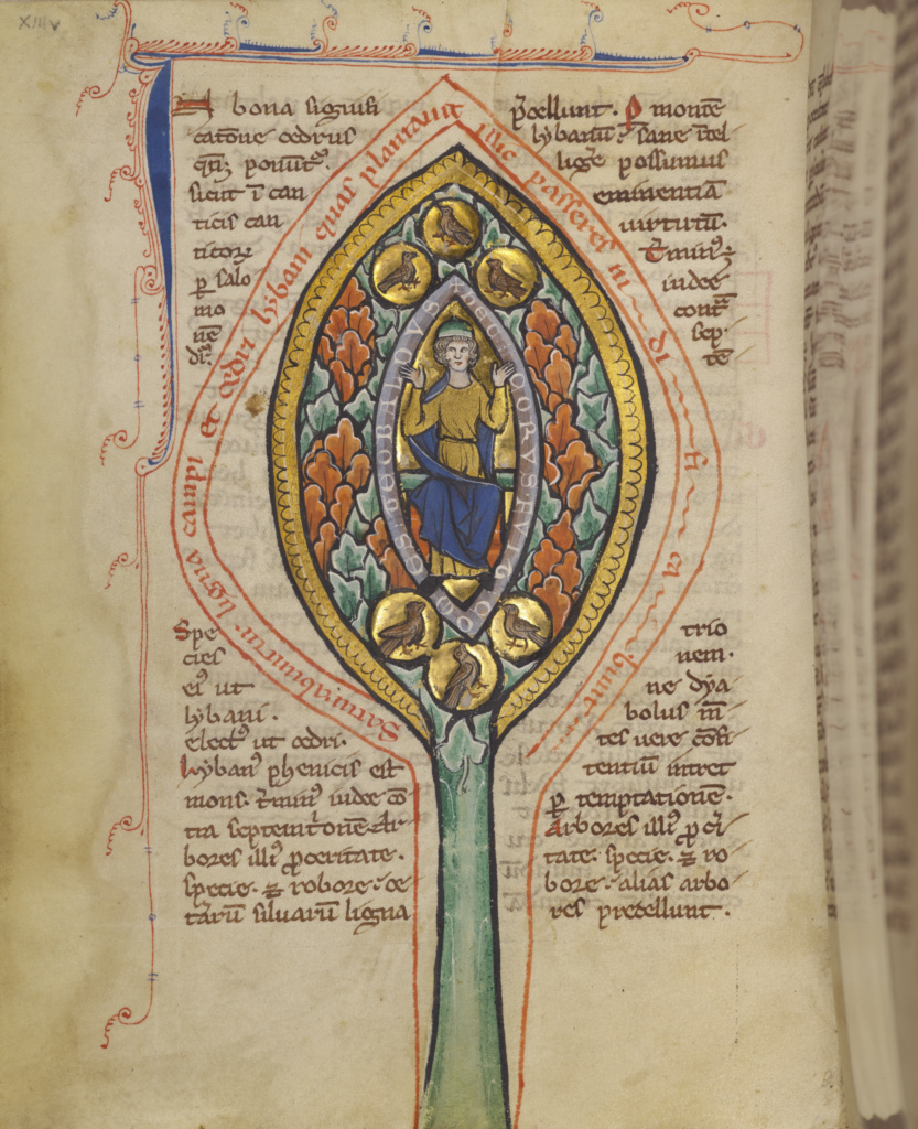 A Man Enthroned within a Mandorla in a Tree; Unknown; Thérouanne ?, France (formerly Flanders); about 1270; Tempera colors, gold leaf, and ink on parchment; Leaf: 19.1 × 14.3 cm (7 1/2 × 5 5/8 in.); Ms. Ludwig XV 3 (83.MR.173), fol. 13v; The J. Paul Getty Museum, Los Angeles, Ms. Ludwig XV 3, fol. 13v; Rights Statement: No Copyright - United States
