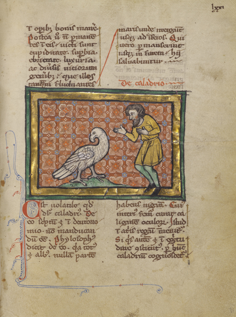 A Large Bird and a Man; Unknown; Thérouanne ?, France (formerly Flanders); about 1270; Tempera colors, gold leaf, and ink on parchment; Leaf: 19.1 × 14.3 cm (7 1/2 × 5 5/8 in.); Ms. Ludwig XV 3 (83.MR.173), fol. 71; The J. Paul Getty Museum, Los Angeles, Ms. Ludwig XV 3, fol. 71; Rights Statement: No Copyright - United States