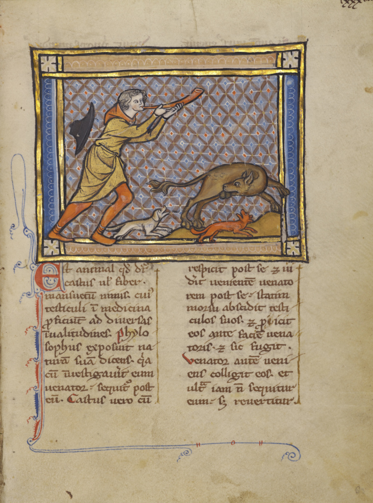 A Hunter Blowing His Horn and a Beaver; Unknown; Thérouanne ?, France (formerly Flanders); about 1270; Tempera colors, gold leaf, and ink on parchment; Leaf: 19.1 × 14.3 cm (7 1/2 × 5 5/8 in.); Ms. Ludwig XV 3 (83.MR.173), fol. 83; The J. Paul Getty Museum, Los Angeles, Ms. Ludwig XV 3, fol. 83; Rights Statement: No Copyright - United States