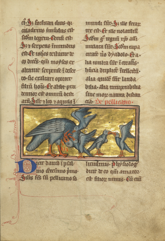 A Pelican Feeding her Young; Unknown; Thérouanne ?, France (formerly Flanders); 1277 or after; Tempera colors, pen and ink, gold leaf, and gold paint; Leaf: 23.3 × 16.4 cm (9 3/16 × 6 7/16 in.); Ms. Ludwig XV 4 (83.MR.174), fol. 75; The J. Paul Getty Museum, Los Angeles, Ms. Ludwig XV 4, fol. 75; Rights Statement: No Copyright - United States