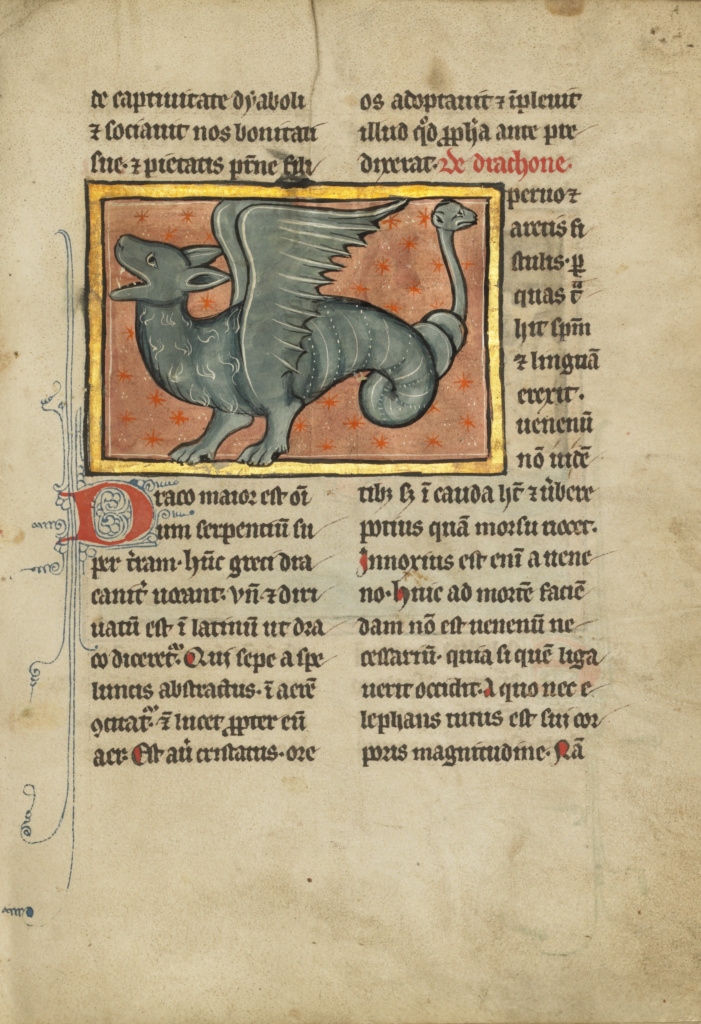 A Winged Dragon; Unknown; 1277 or after; Tempera colors, pen and ink, gold leaf, and gold paint on parchment; Leaf: 23.3 × 16.4 cm (9 3/16 × 6 7/16 in.); Ms. Ludwig XV 4 (83.MR.174), fol. 94; Rights Statement: No Copyright - United States