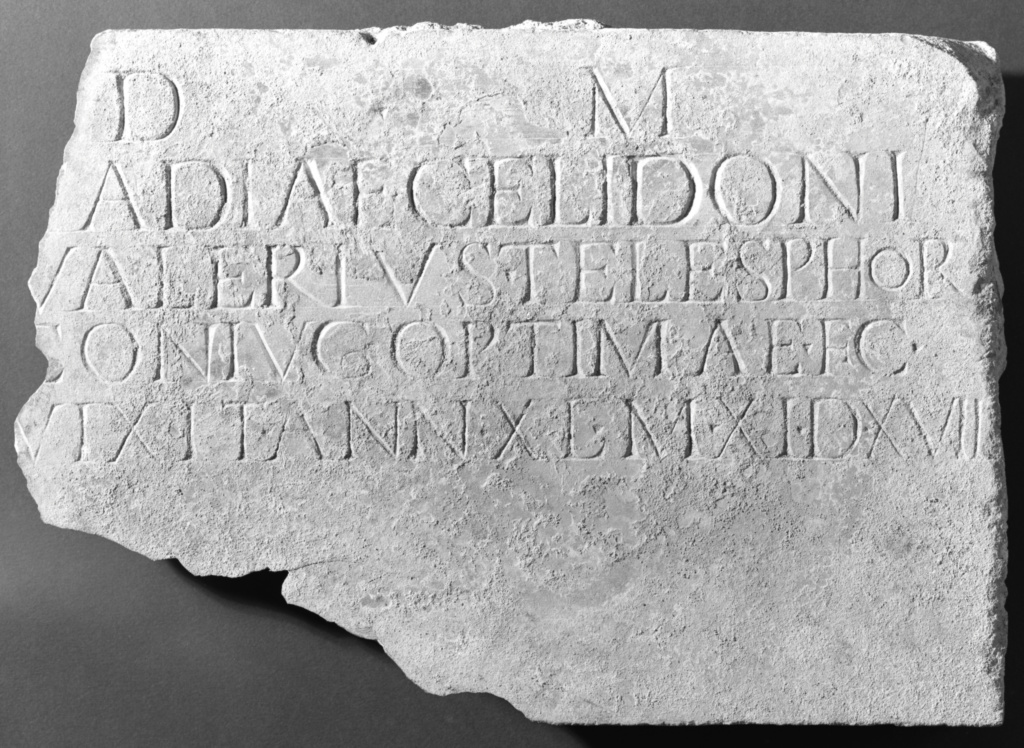 Latin Funerary Inscription Cut into the Reverse of a Fluted Pilaster
