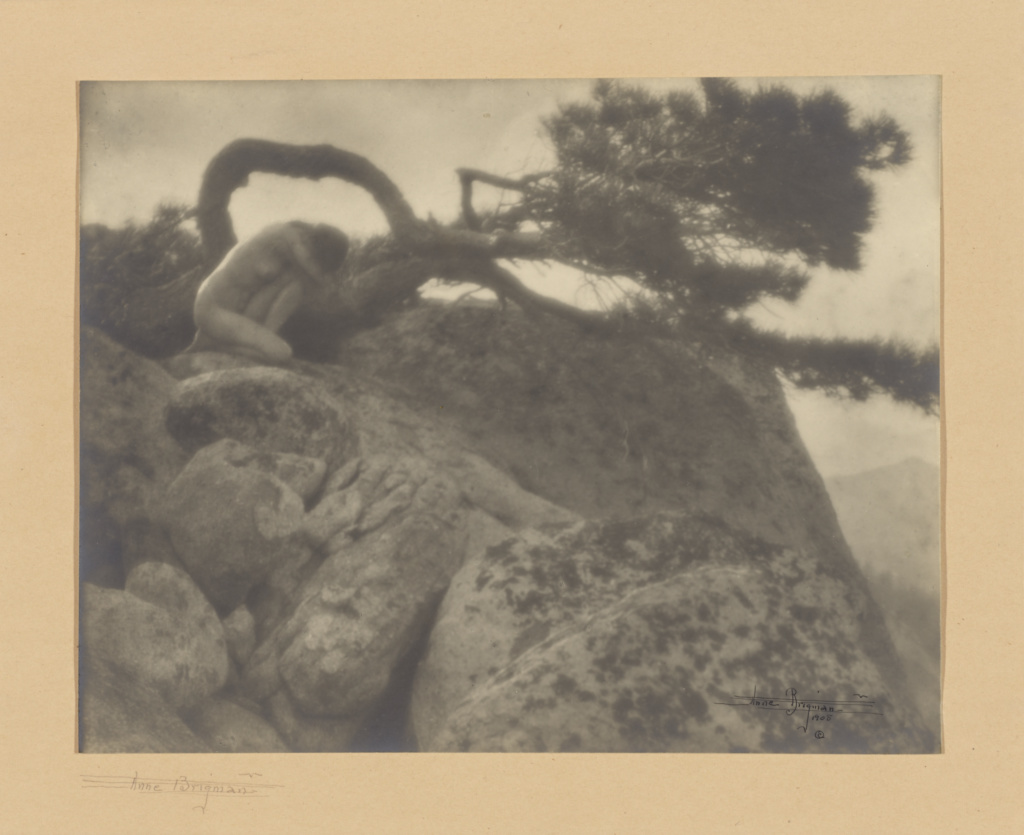 [The Lone Pine]; Anne W. Brigman (American, 1869 - 1950); 1908; Gelatin silver print; 19.3 × 24.6 cm (7 5/8 × 9 11/16 in.); 84.XP.164.5; The J. Paul Getty Museum, Los Angeles; Rights Statement: No Copyright - United States
