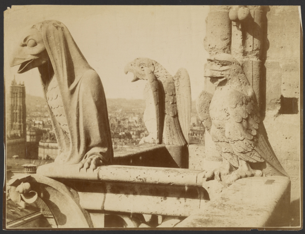 [Gargoyles, Notre-Dame, Paris]; Adolphe Giraudon (French, 1849 - 1929); Paris, France; about 1875; Albumen silver print; 27.5 × 28 cm (10 13/16 × 11 in.); 84.XP.492.8; The J. Paul Getty Museum, Los Angeles; Rights Statement: No Copyright - United States