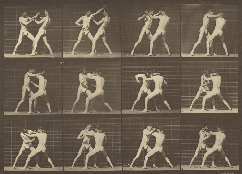 Animal Locomotion; Eadweard J. Muybridge (American, born England, 1830 - 1904); 1887; Collotype; 17.1 × 31.4 cm (6 3/4 × 12 3/8 in.); 84.XM.628.43; Rights Statement: No Copyright - United States