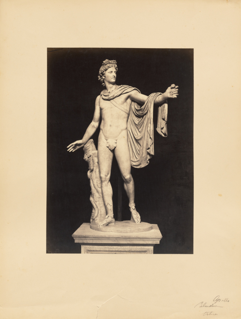 Apollo Belvedere; James Anderson (British, 1813 - 1877); Rome, Italy; about 1845 - 1855; Albumen silver print; 41 × 29.2 cm (16 1/8 × 11 1/2 in.); 84.XM.635.24; The J. Paul Getty Museum, Los Angeles; Rights Statement: No Copyright - United States