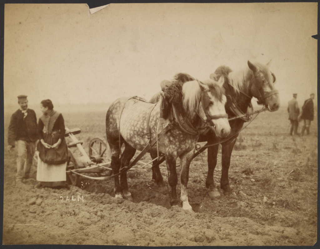 [Horse-drawn plow]; Unknown maker, French ?; about 1870–1889; Albumen silver print; 19.4 × 25.1 cm (7 5/8 × 9 7/8 in.); 84.XP.687.6; The J. Paul Getty Museum, Los Angeles; Rights Statement: No Copyright - United States