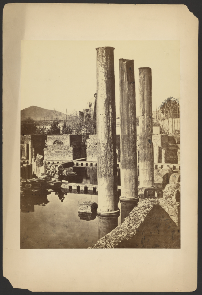 [Ruins with columns]; Unknown; about 1865–1885; Albumen silver print; 32 × 24.7 cm (12 5/8 × 9 3/4 in.); 84.XP.709.781; The J. Paul Getty Museum, Los Angeles; Rights Statement: No Copyright - United States
