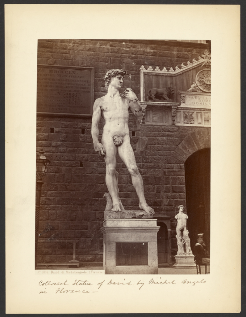 David by Michelangelo (Florence); Giorgio Sommer (Italian, born Germany, 1834 - 1914); about 1857–1890; Albumen silver print; 24.3 × 18.2 cm (9 9/16 × 7 3/16 in.); 84.XP.854.1; The J. Paul Getty Museum, Los Angeles; Rights Statement: No Copyright - United States