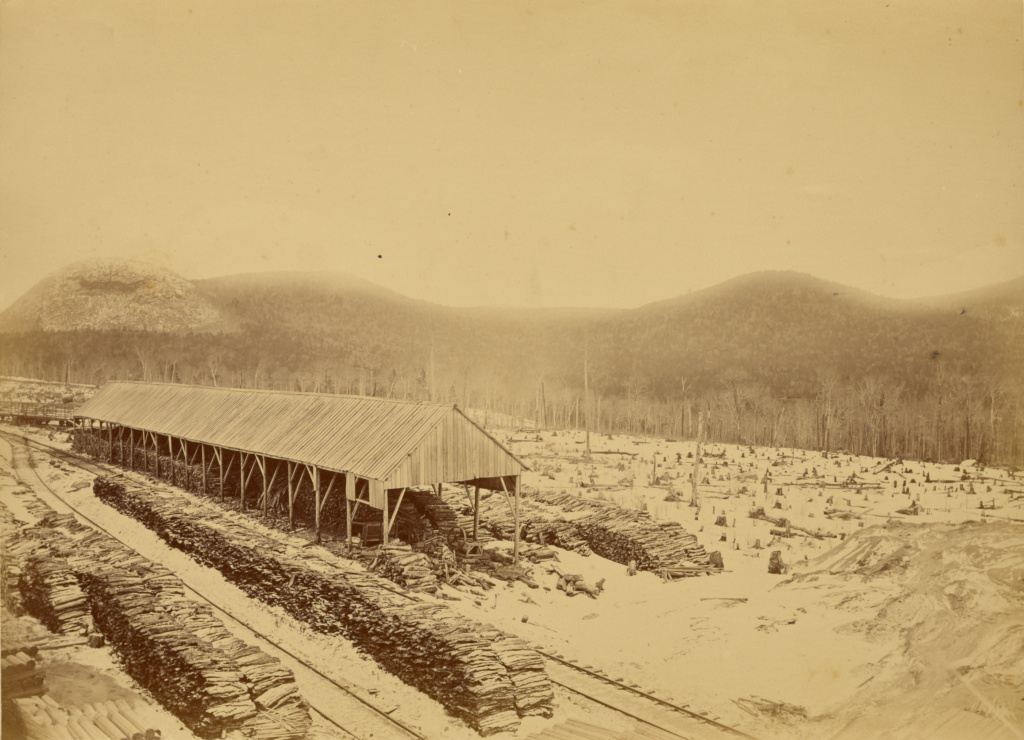 R.E. Peabody & Co., Lumber Manufacturers, Peabody Station, Vermont; Daniel A. Clifford (American, 1826 - 1887); United States; about 1872–1887; Albumen silver print; 30.5 × 42.2 cm (12 × 16 5/8 in.); 85.XP.13.9; The J. Paul Getty Museum, Los Angeles; Rights Statement: No Copyright - United States