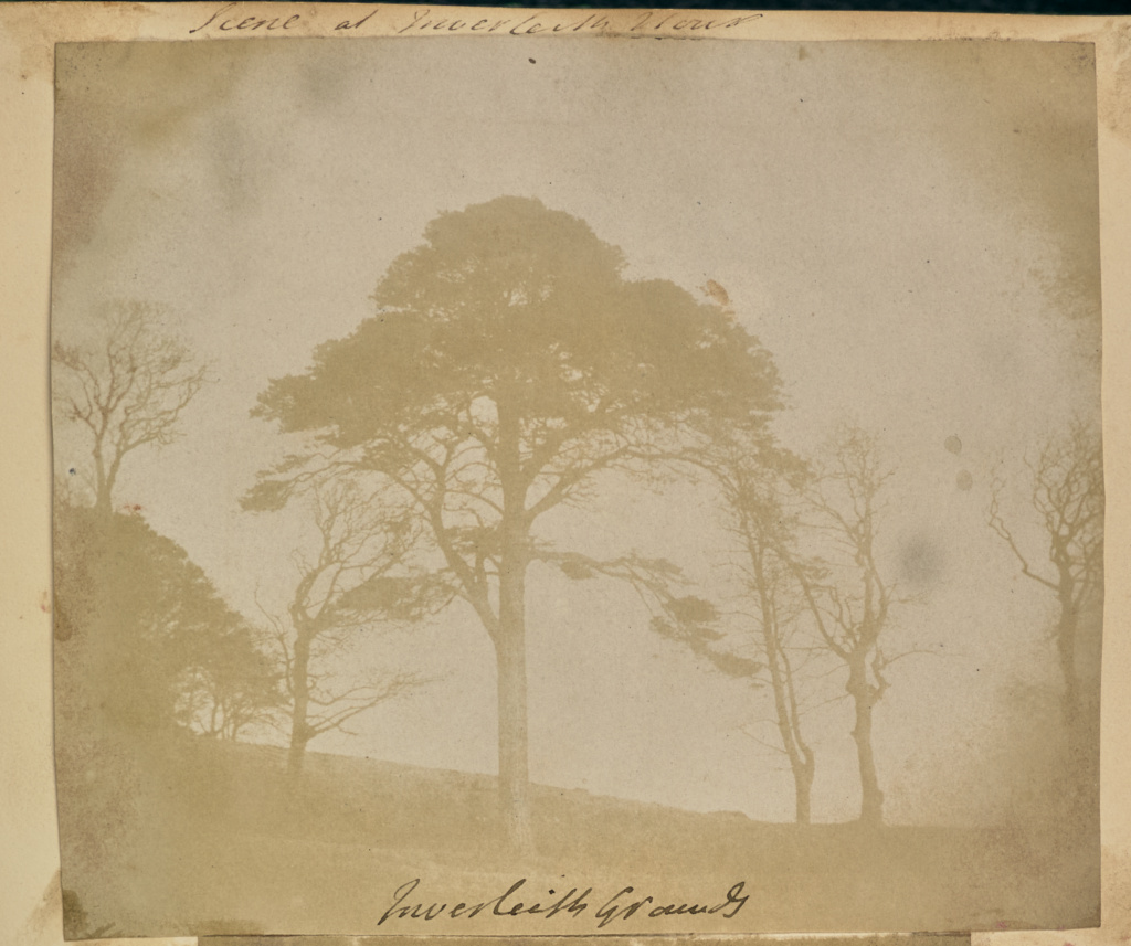 Inverleith Grounds; Attributed to Frances Monteith (Scottish, 1805 - 1898); 1843; Salted paper print from a paper negative; 11.1 × 13 cm (4 3/8 × 5 1/8 in.); 84.XZ.574.100; The J. Paul Getty Museum, Los Angeles; Rights Statement: No Copyright - United States