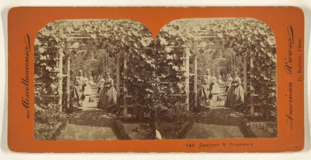 Garden & Grapery.; Deloss Barnum (American, 1825 - 1873); about 1860; Albumen silver print; 84.XC.702.143; The J. Paul Getty Museum, Los Angeles; Rights Statement: No Copyright - United States