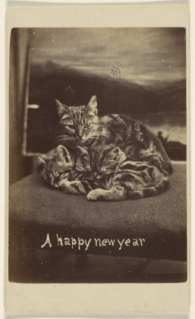 A happy new year; Henry Pointer (British, 1822 - 1889); about 1865; Albumen silver print; 84.XC.873.5910; The J. Paul Getty Museum, Los Angeles; Rights Statement: No Copyright - United States