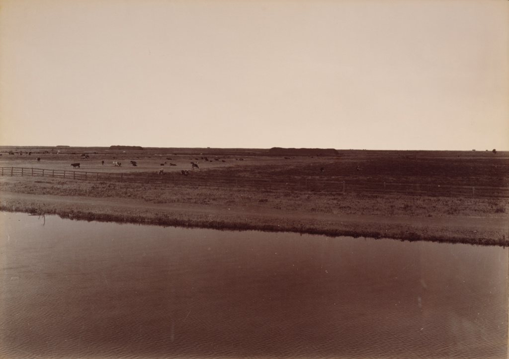 View on the Calloway Canal, Near Poso Creek, Kern County; Carleton Watkins (American, 1829 - 1916); 1887; Albumen silver print; 37.5 × 53 cm (14 3/4 × 20 7/8 in.); 92.XM.96.3; The J. Paul Getty Museum, Los Angeles; Rights Statement: No Copyright - United States