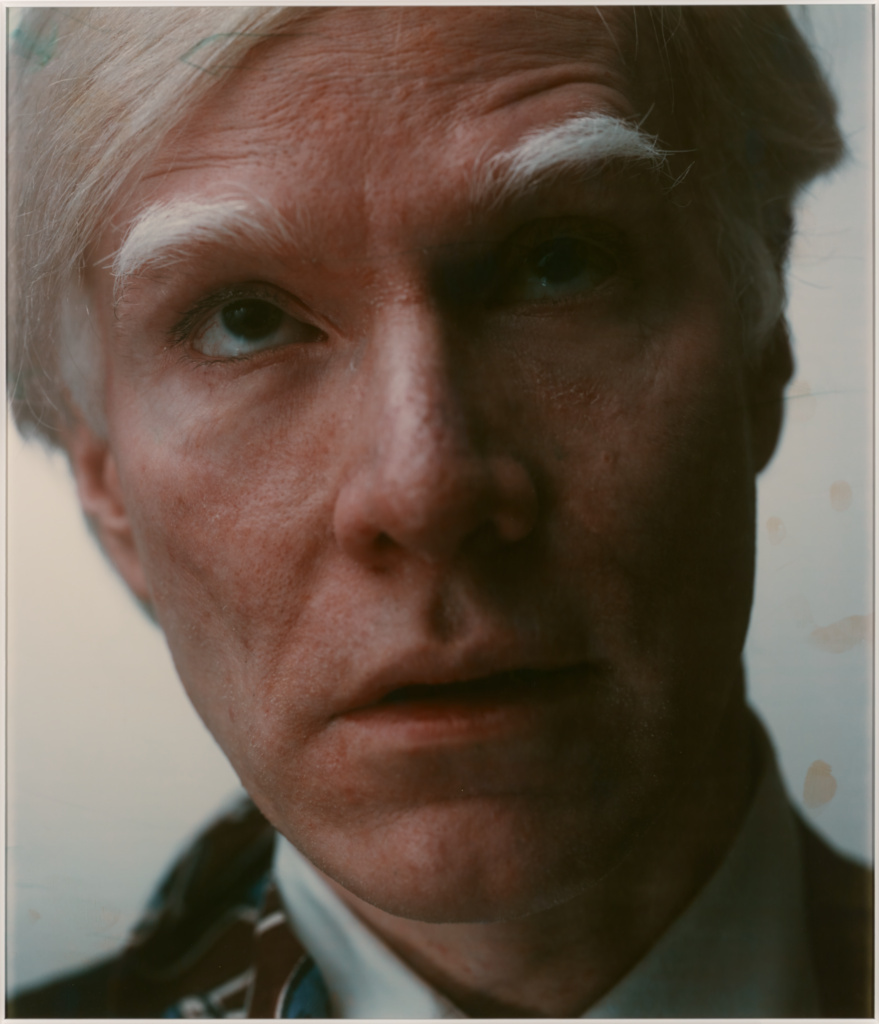Self-portrait; Andy Warhol (American, 1928 - 1987); 1979; Polaroid dye diffusion print; Sheet: 81.9 × 55.9 cm (32 1/4 × 22 in.); 98.XM.5.1; Rights Statement: In Copyright; Copyright: © The Andy Warhol Foundation for the Visual Arts, Inc.