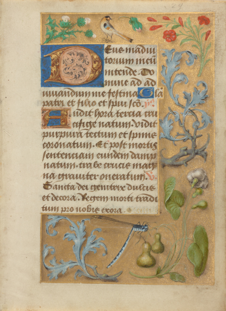 Leaf from a Book of Hours; Unknown; Northern, France; about 1480–1490; Tempera colors and gold on parchment; Leaf: 12.4 × 9.2 cm (4 7/8 × 3 5/8 in.); Ms. 45 (92.MS.34); The J. Paul Getty Museum, Los Angeles, Ms. 45; Rights Statement: No Copyright - United States