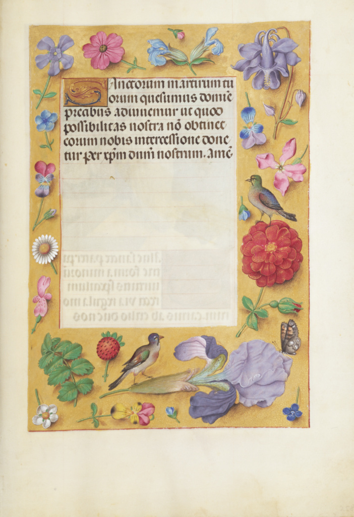 Decorated Text Page; Unknown; Ghent, Belgium; about 1510 - 1520; Tempera colors, gold, and ink on parchment; Leaf: 23.2 × 16.7 cm (9 1/8 × 6 9/16 in.); Ms. Ludwig IX 18 (83.ML.114), fol. 258; The J. Paul Getty Museum, Los Angeles, Ms. Ludwig IX 18, fol. 258; Rights Statement: No Copyright - United States