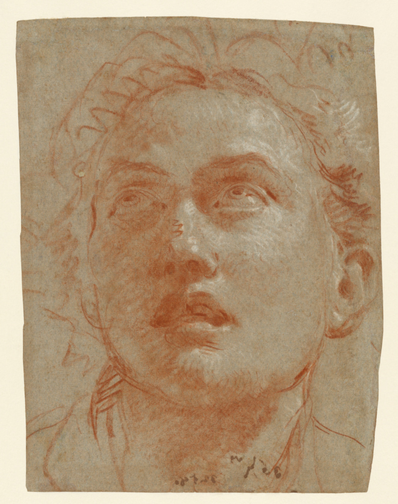 Head of a Man Looking Up; Giovanni Battista Tiepolo (Italian, 1696 - 1770); about 1750–1760; Red and white chalk on blue laid paper; 21.1 × 15.2 cm (8 5/16 × 6 in.); 2002.31; Rights Statement: No Copyright - United States