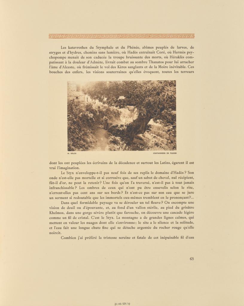 Solos. Châtaigniers en fleurs; Frédéric Boissonnas (Swiss, 1858 - 1946); Geneva, Switzerland; 1910; Heliogravure / Photolithograph; 10.6 × 16.5 cm (4 3/16 × 6 1/2 in.); 84.XB.584.78; The J. Paul Getty Museum, Los Angeles; Rights Statement: No Copyright - United States