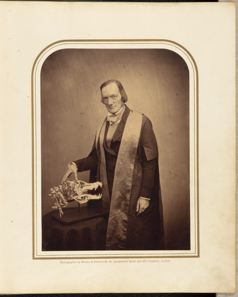 Professor Owen, F.R.S.; Maull & Polyblank (British, active 1850s - 1860s); negative about 1856; print 1859; Albumen silver print; 20 × 14.7 cm (7 7/8 × 5 13/16 in.); 84.XB.949.4.1; Rights Statement: No Copyright - United States