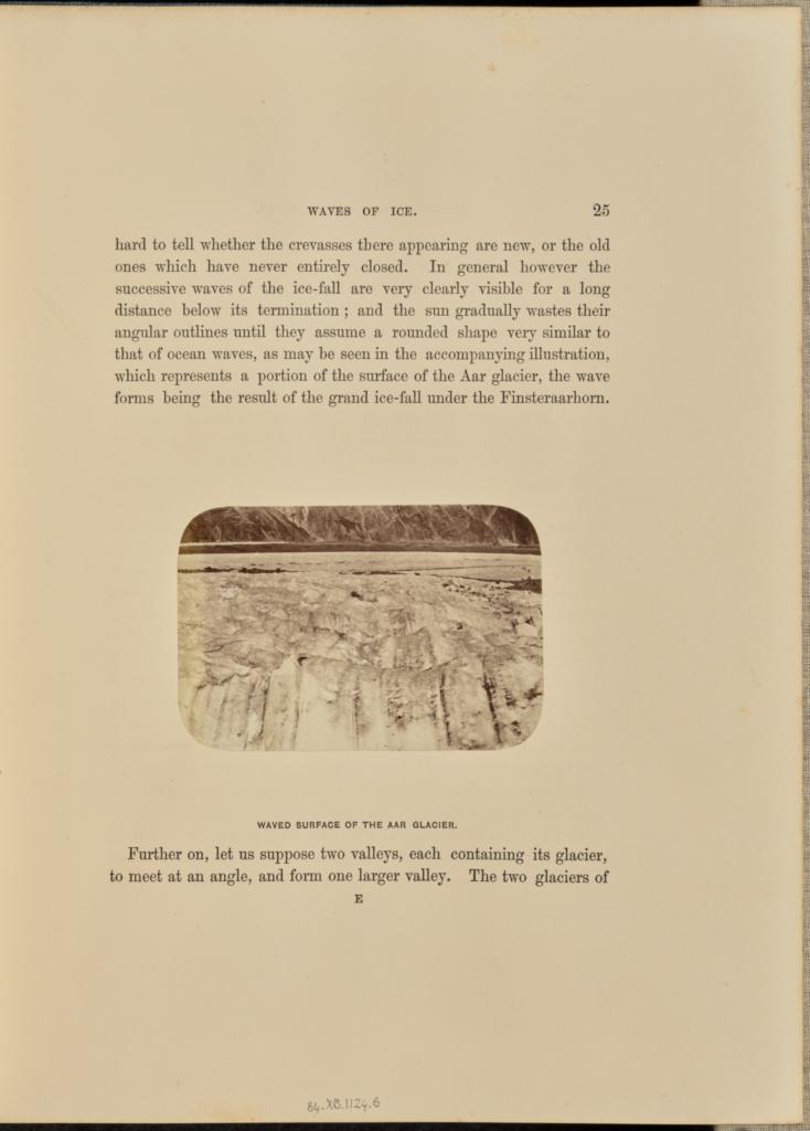 GSG: q=Alps Prints