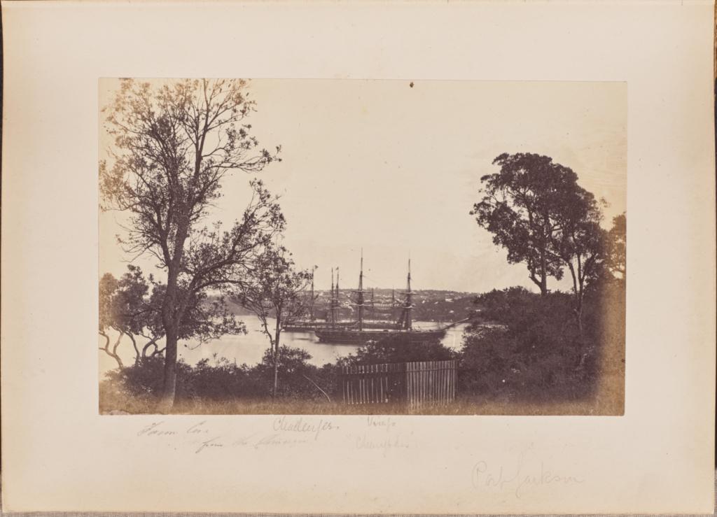 Farm Cove; Unknown maker; Sydney, Australia; 1860–1876; Albumen silver print; 13.5 × 20.8 cm (5 5/16 × 8 3/16 in.); 84.XA.1515.5; The J. Paul Getty Museum, Los Angeles; Rights Statement: No Copyright - United States
