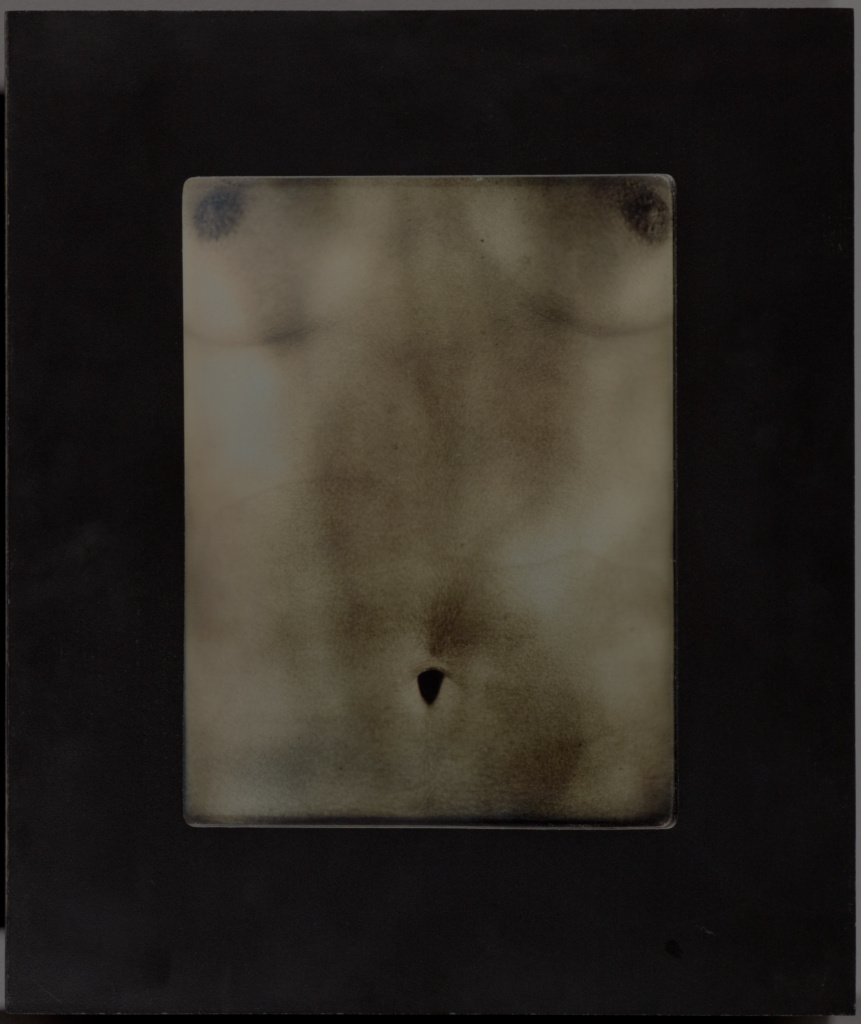 Untitled Torso; Chuck Close (American, 1940 - 2021), and Jerry Spagnoli (American, born 1956); United States; 2001; Daguerreotype; 20.6 × 15.6 cm (8 1/8 × 6 1/8 in.); 2003.487; The J. Paul Getty Museum, Los Angeles; Rights Statement: In Copyright; Copyright: © Chuck Close