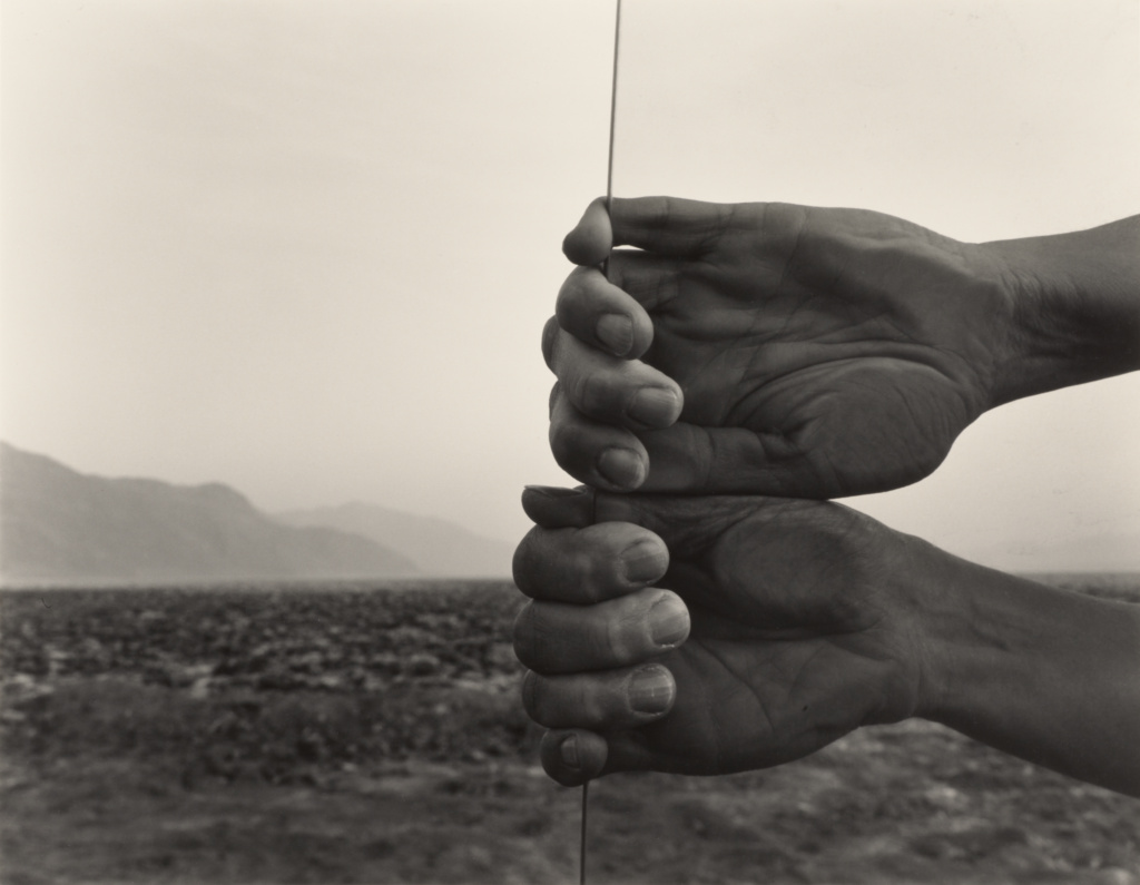 My Hands, Death Valley; Judy Dater (American, born 1941); Death Valley, United States; 1980; Gelatin silver print; 36.2 × 46.7 cm (14 1/4 × 18 3/8 in.); 2008.17.5; The J. Paul Getty Museum, Los Angeles, Purchased with funds provided by the Photographs Council; Rights Statement: In Copyright; Copyright: © Judy Dater