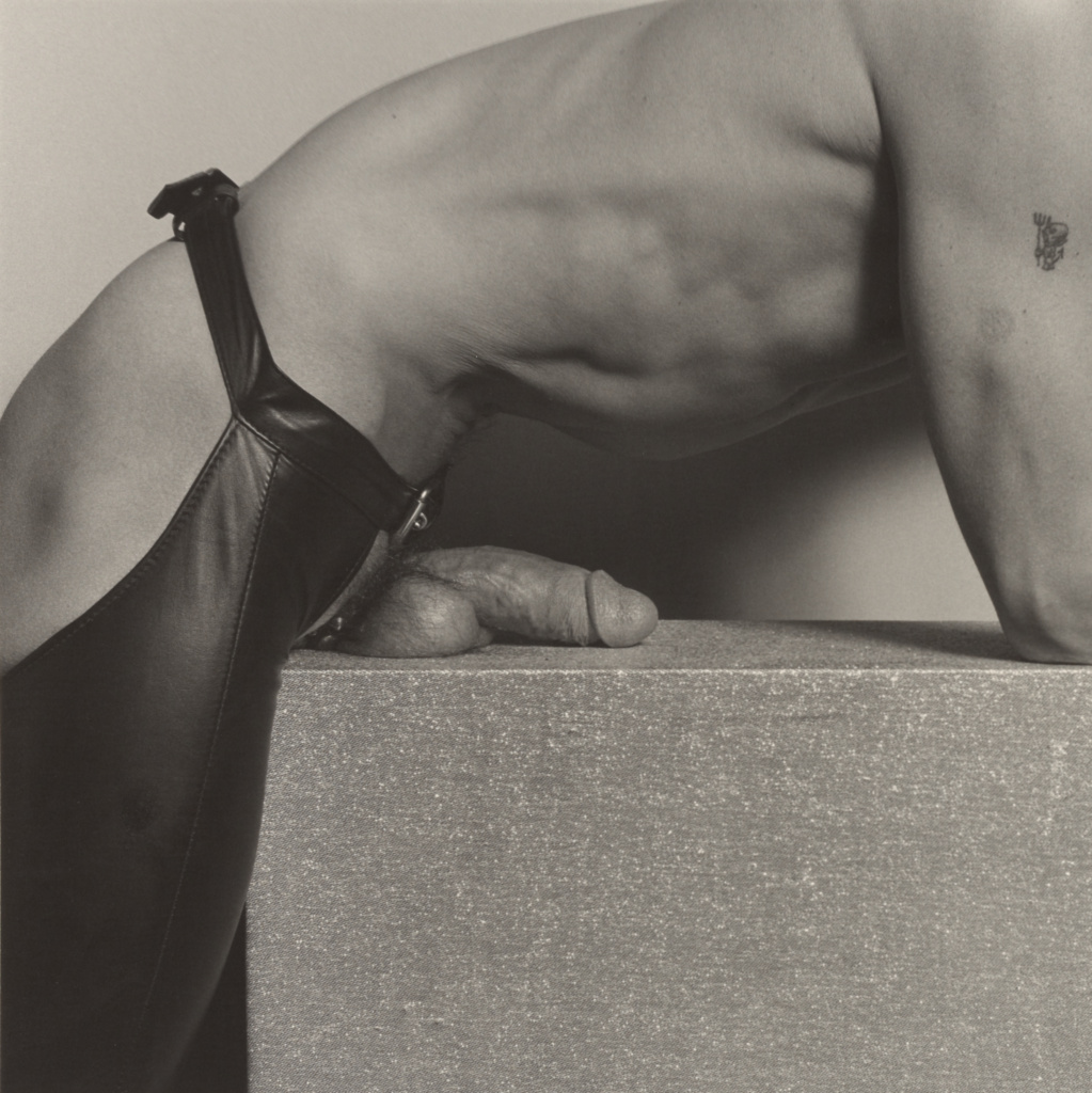 Mark Stevens (Mr. 10 1/2); Robert Mapplethorpe (American, 1946 - 1989); New York, New York, United States; 1976; Gelatin silver print; 35.4 × 35.4 cm (13 15/16 × 13 15/16 in.); 2011.7.5; Jointly acquired by the J. Paul Getty Trust and the Los Angeles County Museum of Art, with funds provided by the J. Paul Getty Trust and the David Geffen Foundation; Rights Statement: In Copyright; Copyright: © Robert Mapplethorpe Foundation