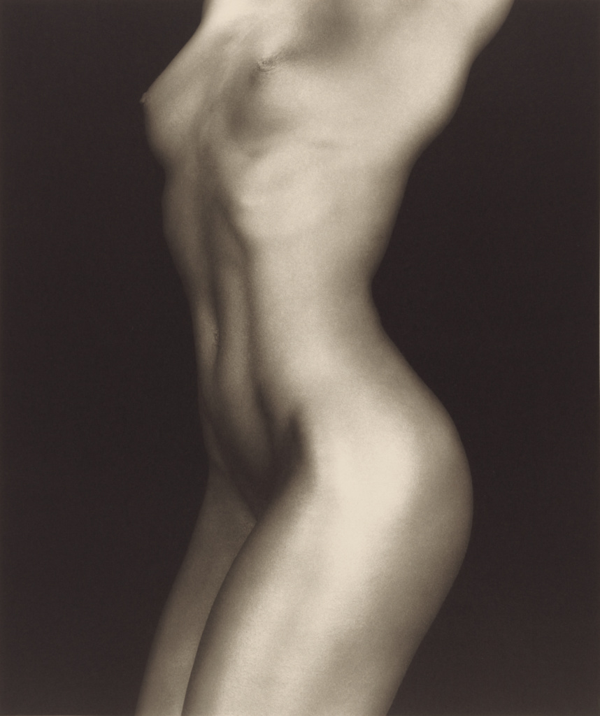 Lydia Cheng; Robert Mapplethorpe (American, 1946 - 1989); New York, New York, United States; 1985; Platinum print; 59.2 × 49.7 cm (23 5/16 × 19 9/16 in.); 2011.7.26; Jointly acquired by the J. Paul Getty Trust and the Los Angeles County Museum of Art, with funds provided by the J. Paul Getty Trust and the David Geffen Foundation; Rights Statement: In Copyright; Copyright: © Robert Mapplethorpe Foundation
