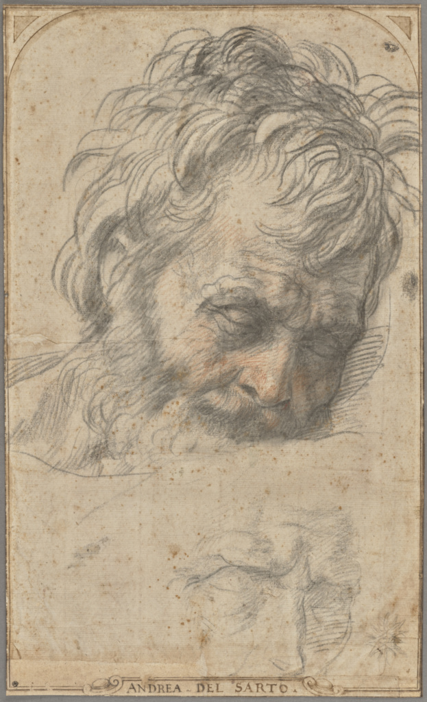 Study for the Head of Saint Joseph (recto); Two Studies of Legs (verso); Andrea del Sarto (Italian, 1486 - 1530); about 1526–1527; Red and black chalks (recto); red chalk (verso); 37.5 × 22.6 cm (14 3/4 × 8 7/8 in.); 2017.73; Rights Statement: No Copyright - United States