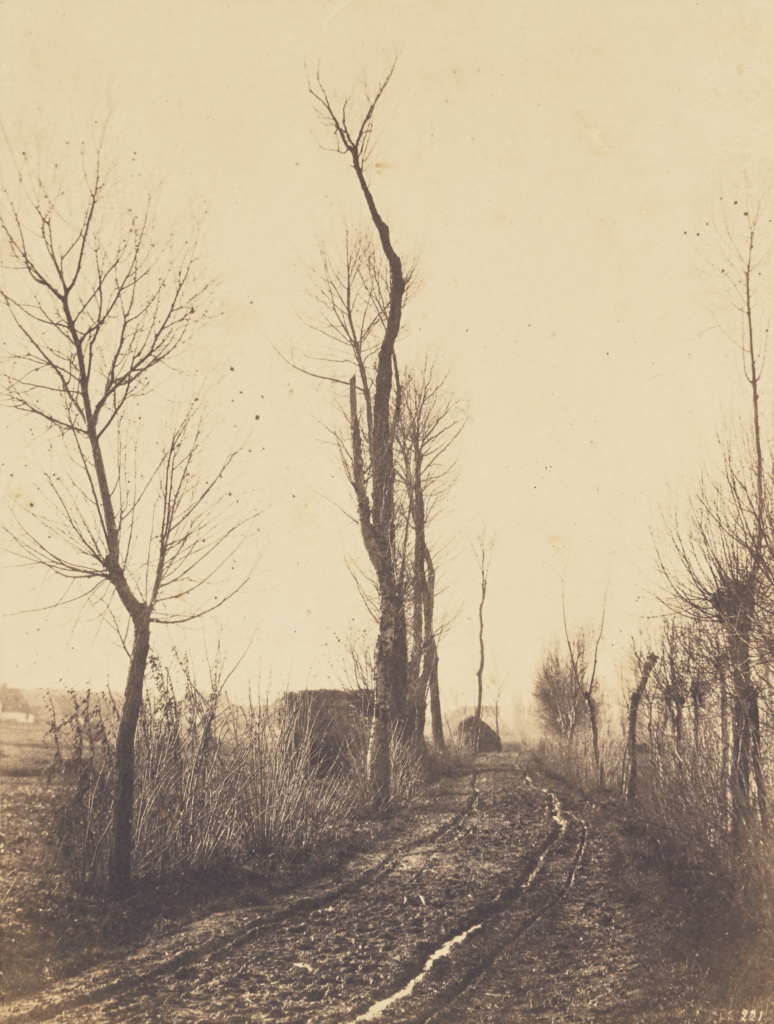 Achicourt near Arras; Eugène Cuvelier (French, 1837 - 1900); France; about 1860; Salted paper print from a paper negative; 26 × 19.7 cm (10 1/4 × 7 3/4 in.); 2015.31; The J. Paul Getty Museum, Los Angeles; Rights Statement: No Copyright - United States