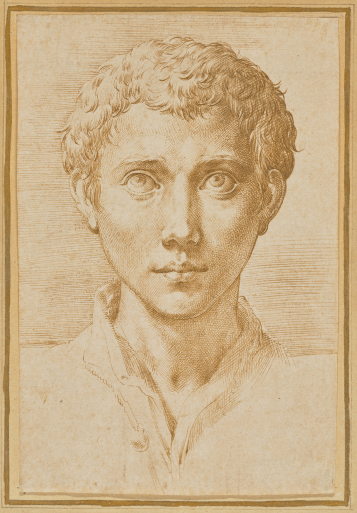 The Head of a Young Man; Parmigianino (Francesco Mazzola) (Italian, 1503 - 1540); about 1539–1540; Pen and brown ink; 16 × 10.5 cm (6 5/16 × 4 1/8 in.); 2017.79; Rights Statement: No Copyright - United States